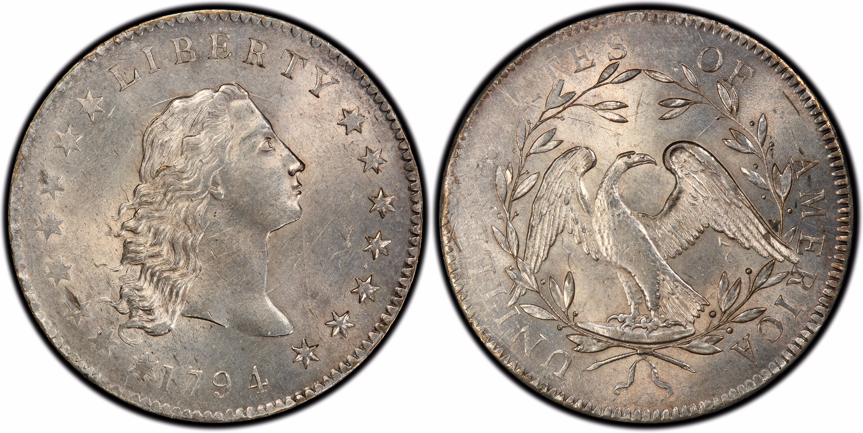 main image for 1794 Dollar & Collector Enjoy Homecoming Party In Philadelphia